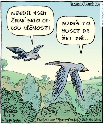 Kreslene Vtipy Celni Sklo U Auta Vtipnice Eu